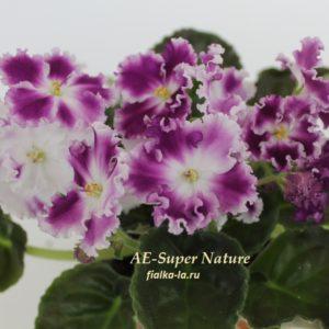 АЕ-Super  Nature (Архипов Е.)