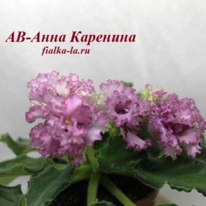 АВ-Анна Каренина (Тарасов)