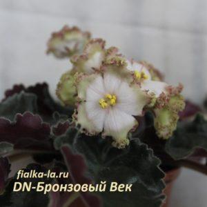 DN-Бронзовый Век (Денисенко)