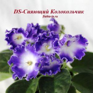 DS-Сияющий Колокольчик (Еникеева)