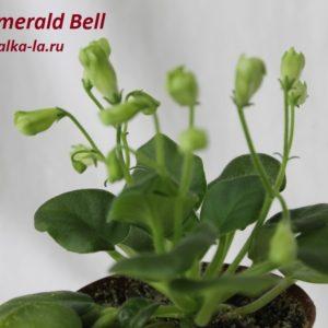 Emerald Bell