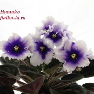 Humako Без названия (Humako)