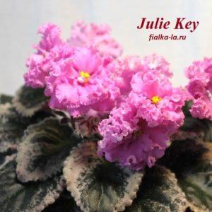 Julie Kay