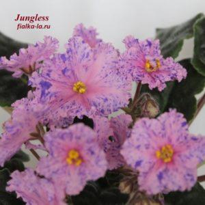 Jungless (Fredette)