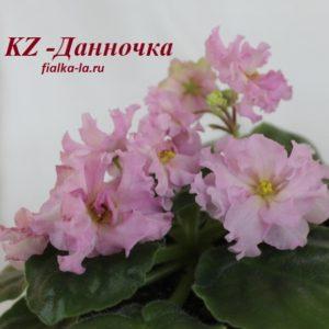 KZ-Данночка (Заикина И.)