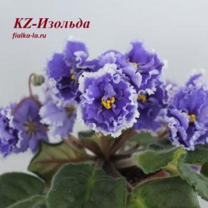 KZ-Изольда (Заикина И.)
