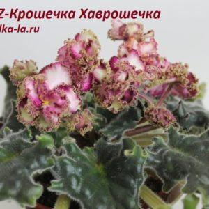 KZ-Крошечка Хаврошечка (Заикина И.)