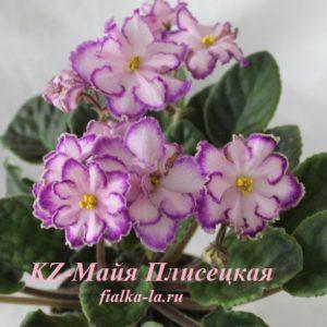 KZ-Майя Плисецкая (Заикина И.)