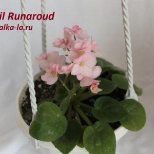 Lil Runaroud (Sorano)