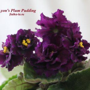 Lyon's Plum Pudding