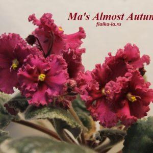 Ma's Almost Autumn
