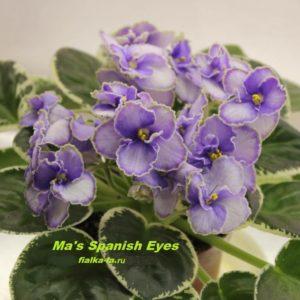 Ma's Spanish Eyes ( Robinson)