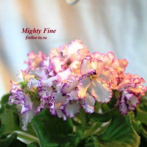 Mighty Fine (Johnson)