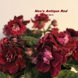 Nes's Antique Red