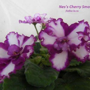 Nes's Cherry Smoke