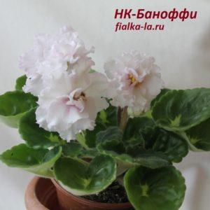 НК-Баноффи (Козак Н.)