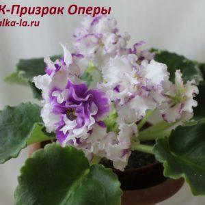 НК-Призрак Оперы (Козак Н.)
