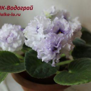 НК-Водограй (Козак Н.)