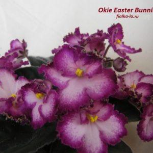 Okie Easter Bunnie (Cochran)
