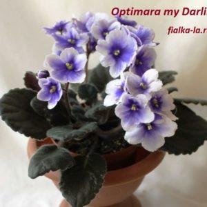 Optimara My Darling