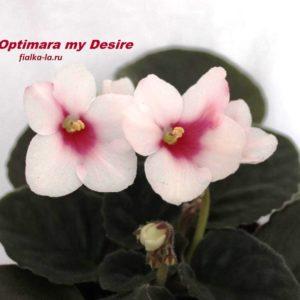 Optimara My Desire