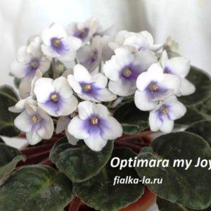 Optimara My Joy