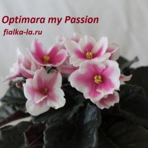 Optimara My Passion
