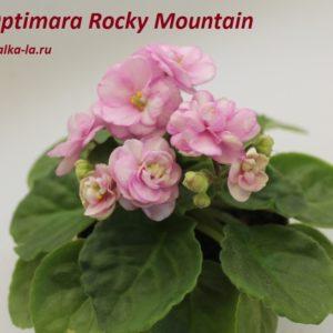 Optimara Rocky Mountain