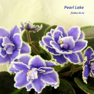 Pearl Lake (Sorano)