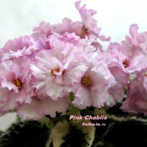Pink Chablis (Sorano)