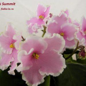 Pink Summit (Sorano)