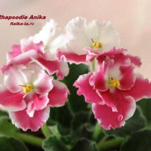 Rhapsodiе Anika (Holtkamp)