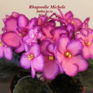 Rhapsodie  Michele (Holtkamp)
