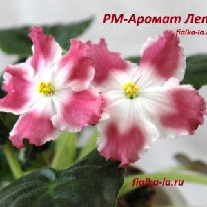 РМ-Аромат Лета (Скорнякова Н.)