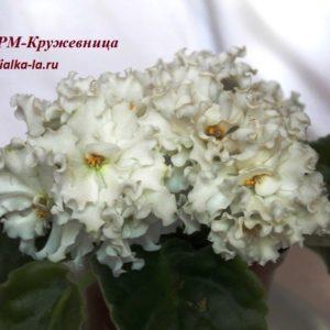 РМ-Кружевница (Скорнякова Н.)