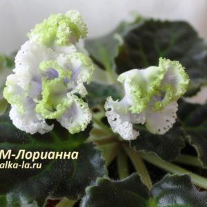 РМ-Лориана (Скорнякова Н.)