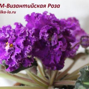 РМ-Византийская Роза (Скорнякова Н.)