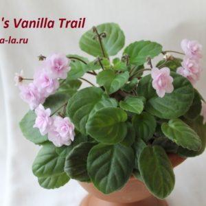 Rob's Vanilla Trail