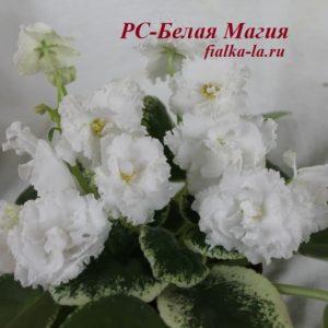 РС-Белая Магия (Репкина С.)