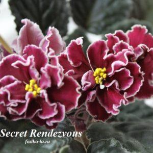 Secret Rеndezvous (Sorano)
