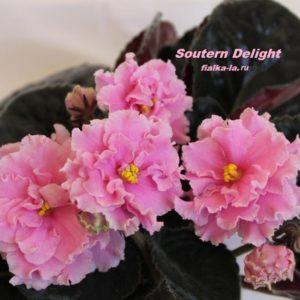 Southern Delight (Sorano)
