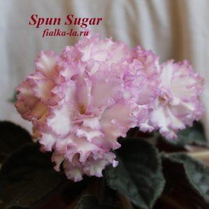 Spun Sugar