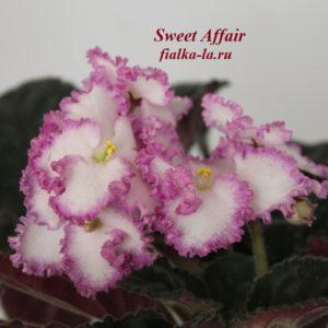 Sweet Affair (LLG)