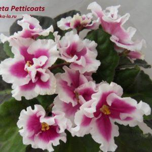 Taffeta Petticoats (Sorano)