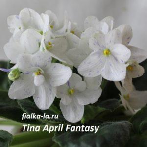 Tina's April Fantasy (T.Elfstorm)