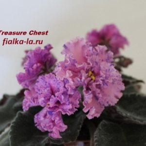 Treasure Chest (Sorano)