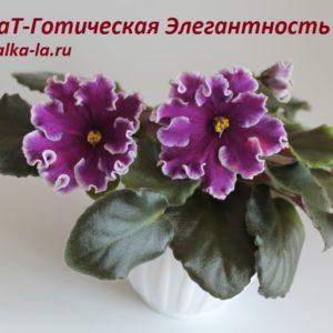 ВаТ-Готическая Элегантность (Валькова Т.)