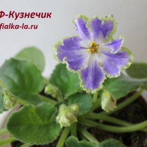 Ф-Кузнечик