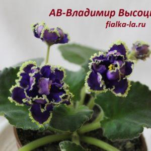 АВ-В.Высоцкий
