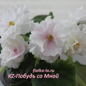 KZ-Побудь со Мной (Заикина И.)